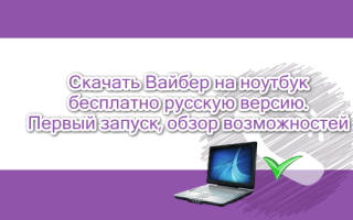 Как скачать Вайбер на ноутбук бесплатно, инструкция