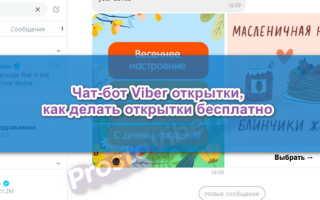 Чат-бот Viber открытки, как пользоваться — инструкция