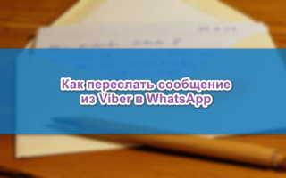 Как переслать сообщение из Viber в WhatsApp — все способы