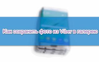 Как сохранить фото в галерею из Viber, где хранятся картинки