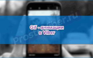 Отправка анимации гиф в Viber, почему в Вайбере пропадает gif