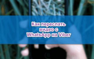Можно ли переслать видео с WhatsApp на Viber — инструкция