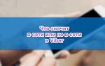 Значение статуса в сети и не в сети в Viber — обзор опции