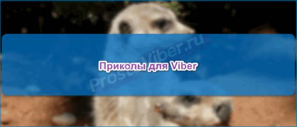 Мемы Вибер
